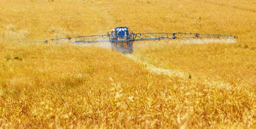 Conservation Agriculture Practices